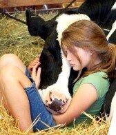 вегетарианство в мире_vegetarianstvo v mire