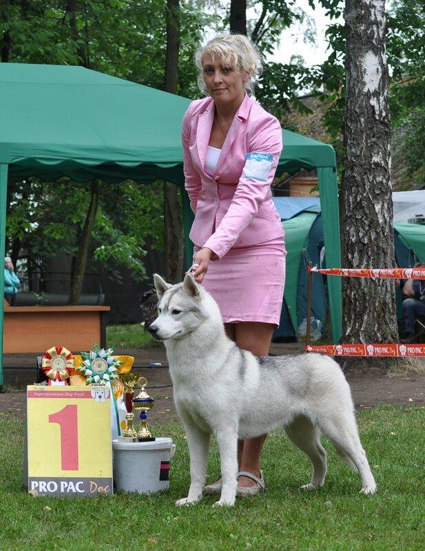 http://img-fotki.yandex.ru/get/5010/v-haiduk.11/0_5b902_4931d1b2_-1-XL.jpg