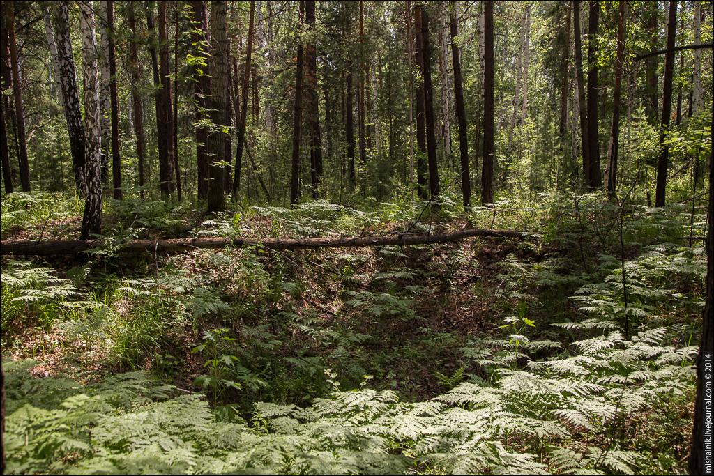 Мало-Агардяшский железный рудник