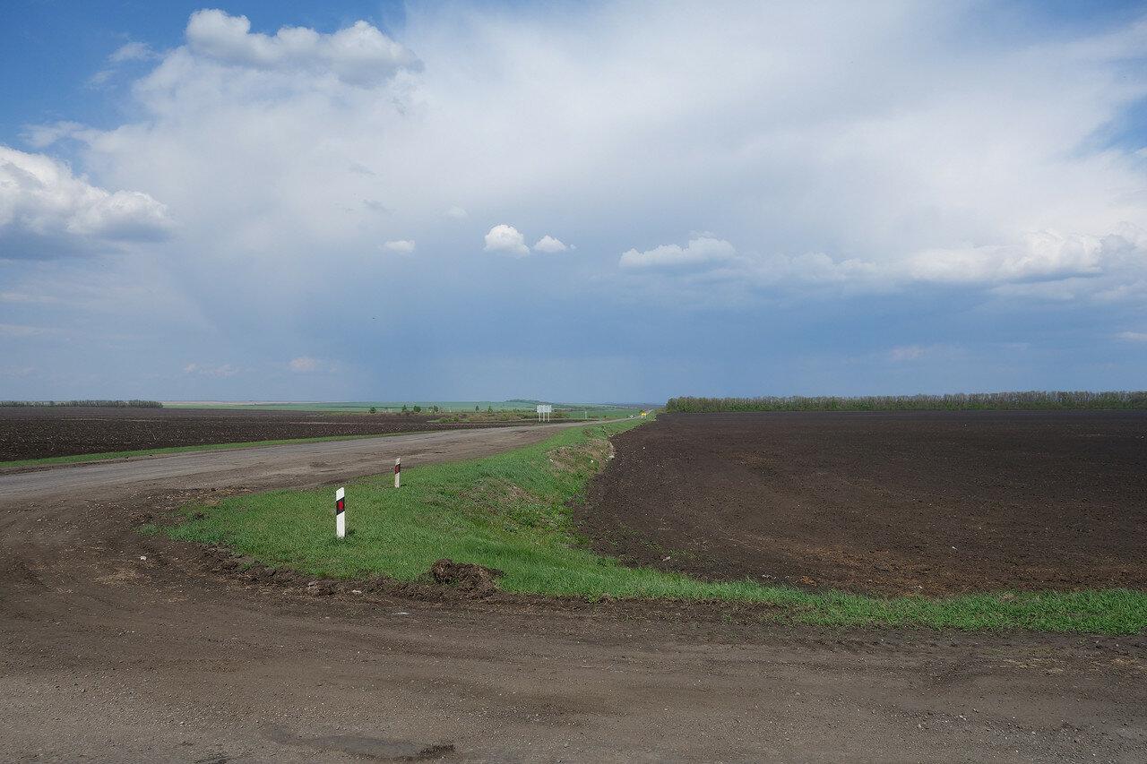 поля вдоль шоссе Сердобск-Междуречье
