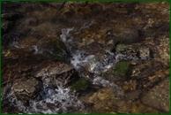 http://img-fotki.yandex.ru/get/5011/15842935.456/0_f485f_1eebf5a2_orig.jpg