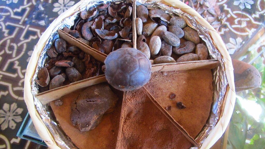 Что можно сделать из какао бобов 131