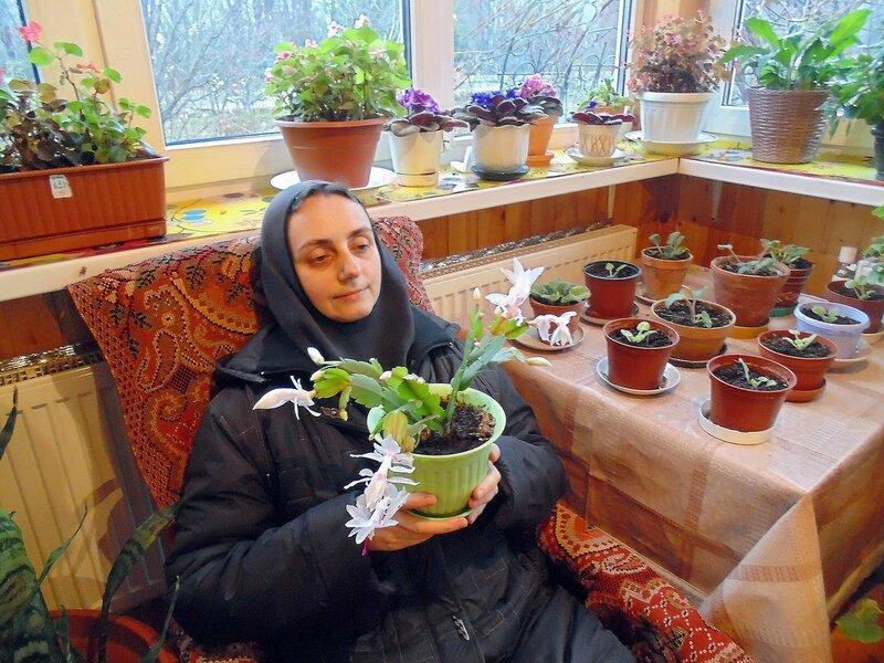 Зимний садик подворья