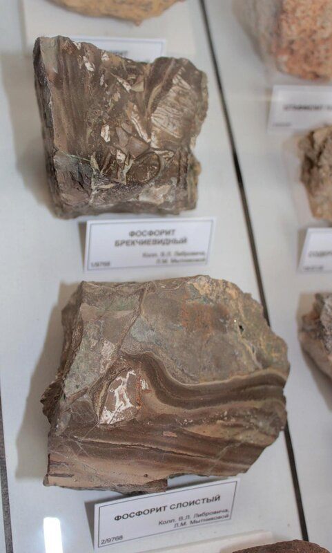 Фосфорит брекчиевидный; фосфорит слоистый