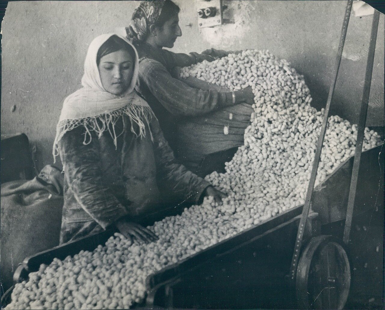 1930. Шелководство Советской России. Ткацкая Фабрика в Тифлисе