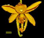 Cassia fistula2.png