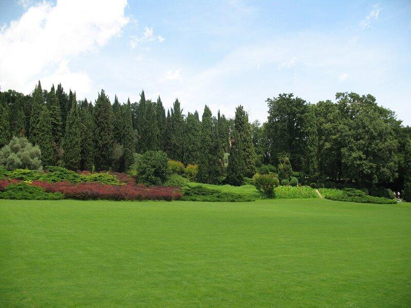 В Парке Сигурта.Зелёное великолепие.