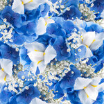Spring white and blue flowers (2).jpg