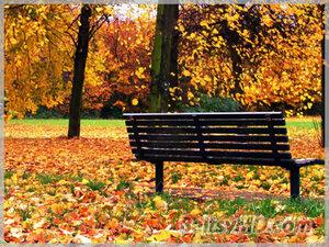 Синоптики: бабье лето откладывается до октября