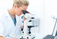 О научной деятельности