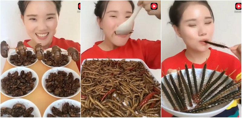 Китаянка жрет насекомых как семечки