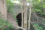 Ж/д мост над ручьем (the railway bridge over a stream)