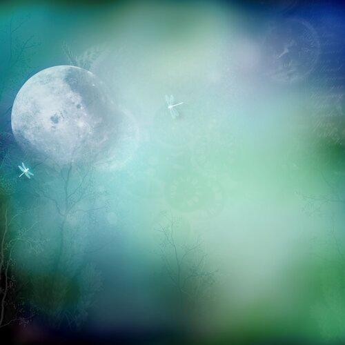 «волшебная ночь» 0_6f02f_dad94507_L