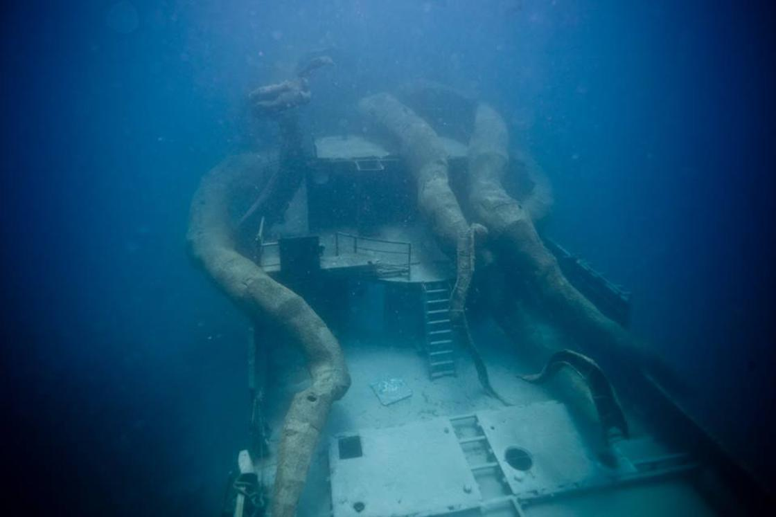 This giant octopus will help create an artificial coral reef