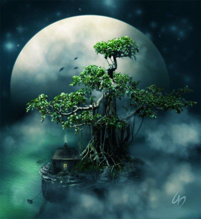 Дерево                        0_69b42_cc5b3ea8_XL