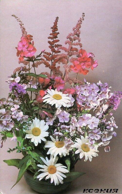 Садовые цветы и букеты фото