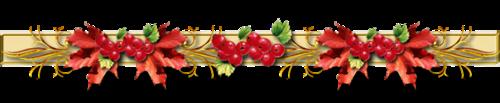 http://img-fotki.yandex.ru/get/5012/575578.273/0_6b23c_a69e9d41_L.jpg