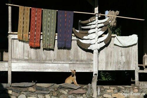 Рога буйволов перед традиционным домом народа нгада
