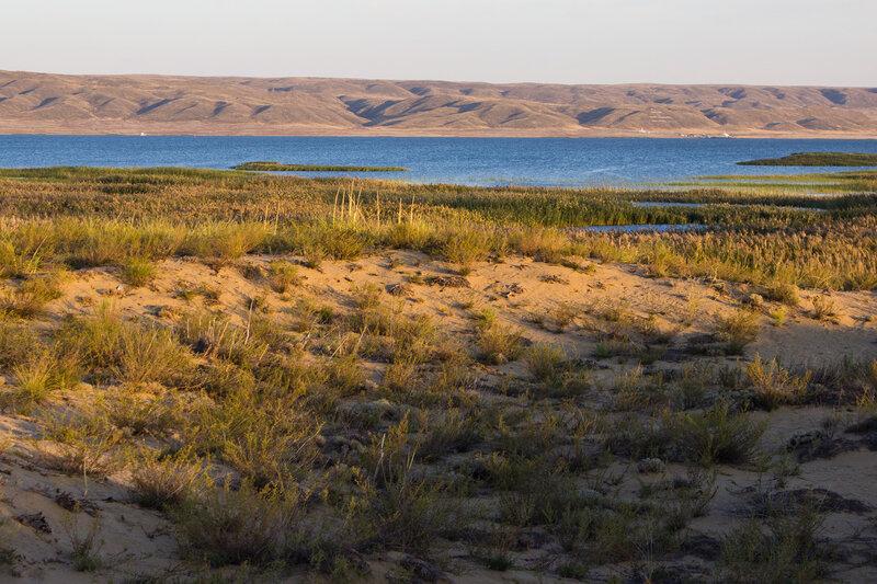дюны на берегу Зайсана