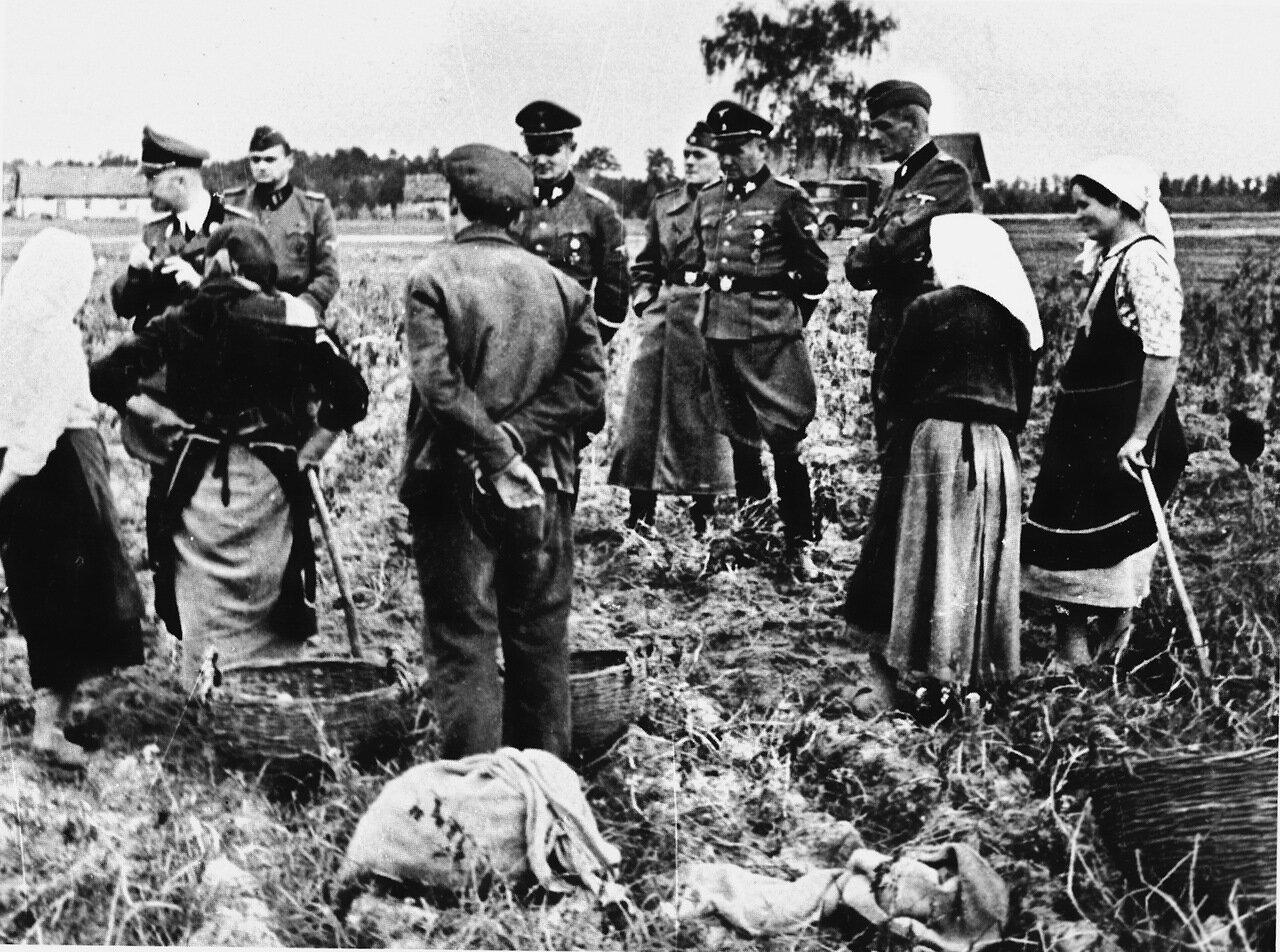 1941. Украина, рейхсфюрер СС Генрих Гиммлер беседует с крестьянами