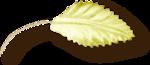 NLD Fabric leaf sh.png