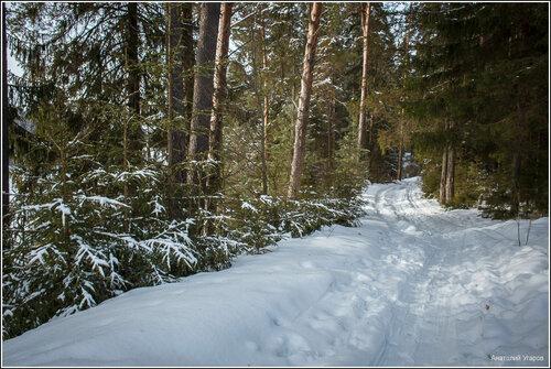 http://img-fotki.yandex.ru/get/5013/131884990.5f/0_c7052_3b810ea_L.jpg
