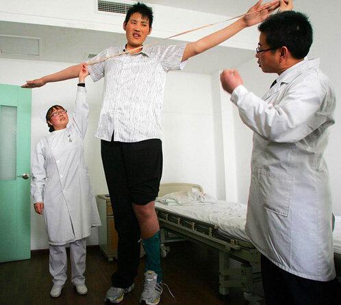 Ученые сделали заявление о том, что чем выше человек, тем он умнее