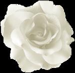 «CAJ.SCR.FR. KIT MARTINE» 0_6f959_a5ed4aa5_S