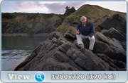 BBC: Первая жизнь / BBC: David Attenborough's First Life (2010/BDRip/1080p/720p/HDRip)