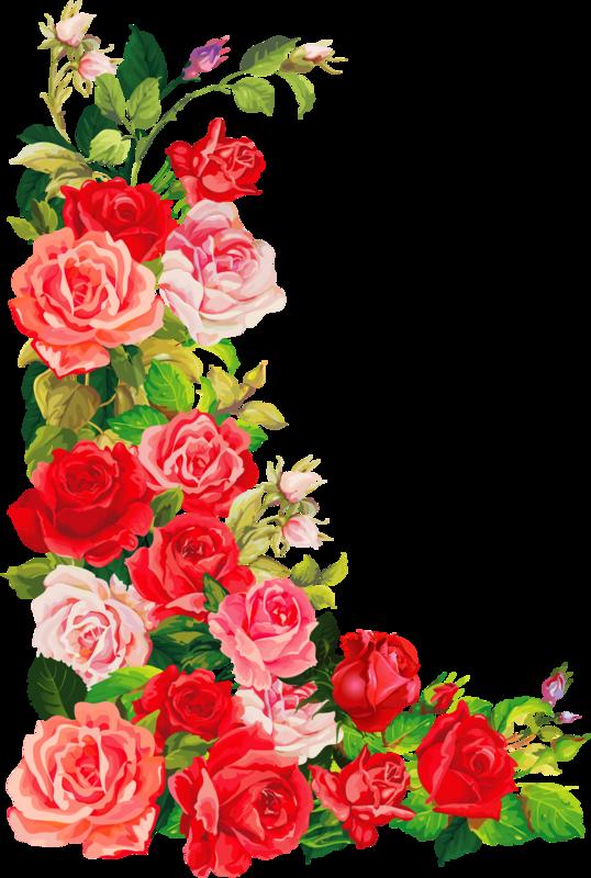 Прикольными поздравлениями, шаблон для открытки розы