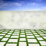 Holliewood_Topiary_Paper2.jpg