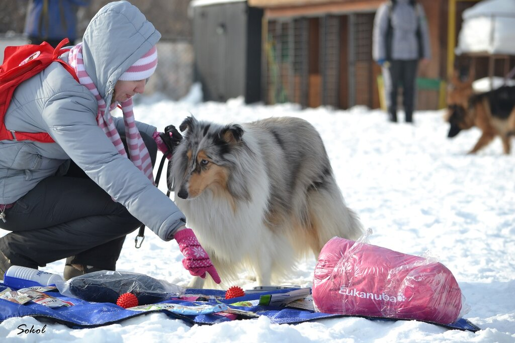 http://img-fotki.yandex.ru/get/5014/194792031.1d/0_c0d8f_720c1cf5_XXL.jpg