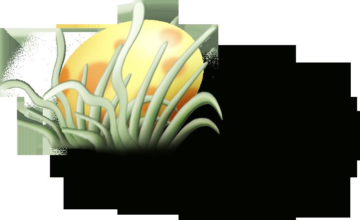 ldavi-Lulusegggarden-eggbehindgrassclump1.png