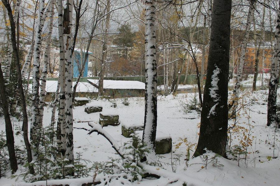 Заброшенный парк аттракционов