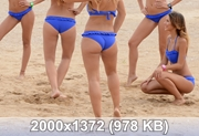 http://img-fotki.yandex.ru/get/5014/240346495.37/0_df072_686b1d18_orig.jpg