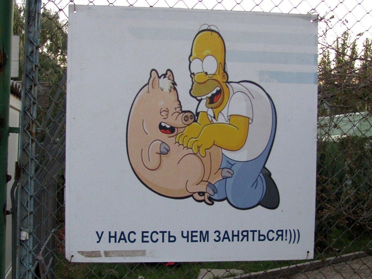 http://img-fotki.yandex.ru/get/5014/29948639.3/0_b4b56_31e8295_XXXL.jpg