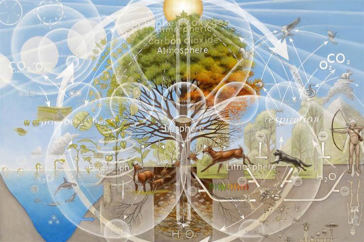 Анапа Экология 2014