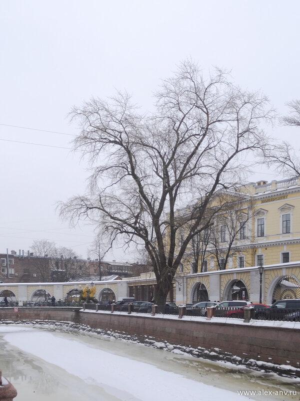 Кусок Банковского моста и ФинЭк на заднем плане.