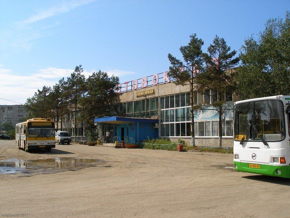 Автовокзал фокино номер телефона 117