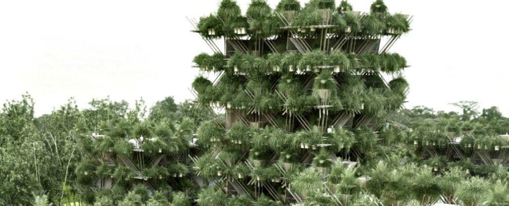 Многоэтажный «дом на дереве» из бамбука и без единого гвоздя