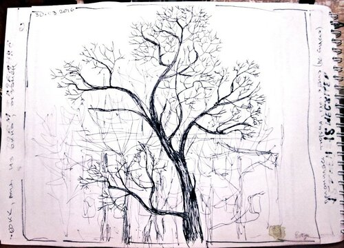 скетчбук дерево. вид из окна