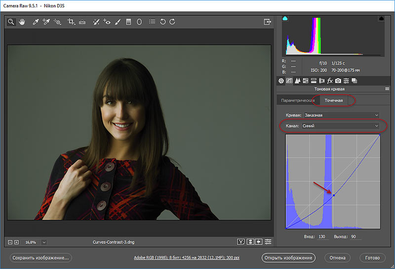 удаление синего цвета из изображения в camera raw