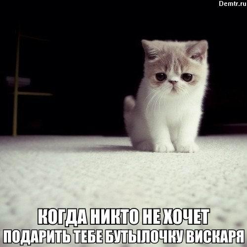 Когда никто !