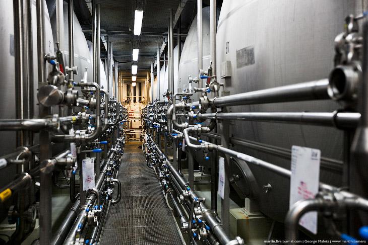 Фотографии и текст Георгия Мальца   1. Пивоварня Bernard находится в небольшом чешском город