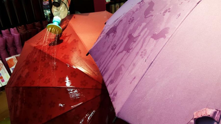 4. Зонты со скрытым рисунком При намокании эти однотонные зонты начинают покрываться узорами.