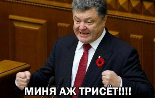 Полку Савченко прибыло: в России судят бандитов из УНА-УНСО