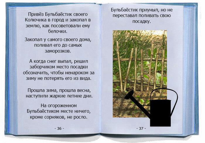 Новые знакомства Бульбаёстика. Беличьи советы.