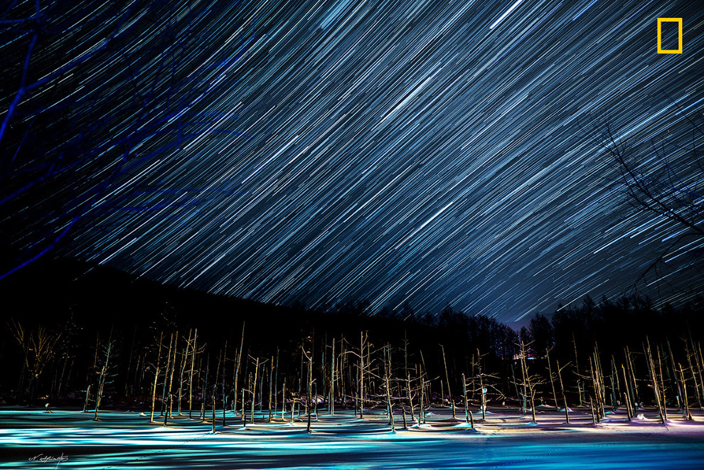4. Стадо оленей на снегу, Швеция. (Фото Adam Cunningham-White | National Geographic Travel Phot