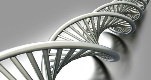 Ученые узнали, почему людям трудно освободиться отнаследственных заболеваний