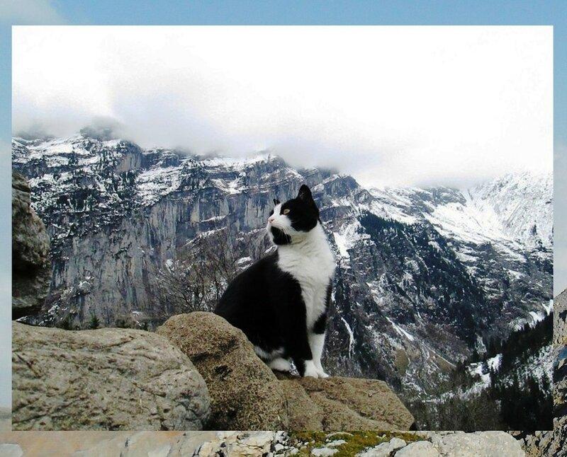 А хорошо в горах... .jpg